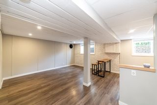 Photo 20: 62 Forest Drive: St. Albert House for sale : MLS®# E4247245