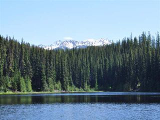 Photo 5: Mead Lake: Land for sale (Whistler)