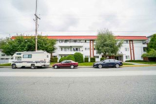 """Photo 16: 311 12096 222 Street in Maple Ridge: West Central Condo for sale in """"Canuck Plaza"""" : MLS®# R2528017"""
