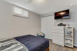 Photo 17: 1532 48 Street SE in Calgary: Forest Lawn Detached for sale : MLS®# A1138104