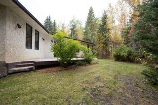 Photo 33: 140 Lac Ste. Anne Trail: Rural Sturgeon County House for sale : MLS®# E4224197