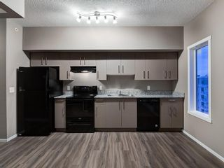 Photo 14: 1611 4641 128 Avenue NE in Calgary: Skyview Ranch Apartment for sale : MLS®# A1029088