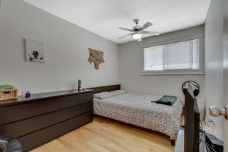 Photo 20: 143 Range Crescent NW in Calgary: Ranchlands Detached for sale : MLS®# A1115323
