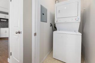 Photo 11: 233 10535 122 Street in Edmonton: Zone 07 Condo for sale : MLS®# E4258088