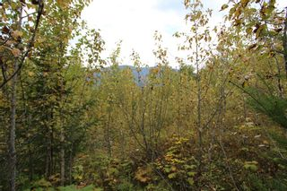 Photo 6: Lot 81 Sunset Drive: Eagle Bay Land Only for sale (Shuswap)  : MLS®# 10186644