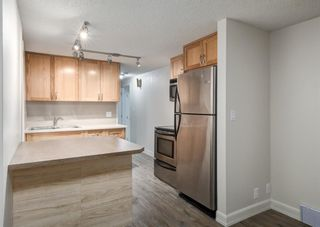 Photo 29: 3414 2 Street NW in Calgary: Highland Park Detached for sale : MLS®# A1079968