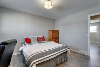 Photo 24: 3812 49 Street NE in Calgary: Whitehorn Detached for sale : MLS®# A1054455