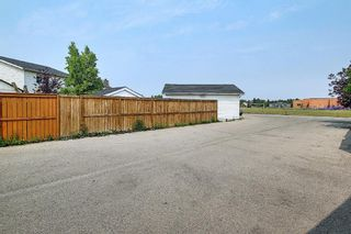 Photo 45: 94 Erin Meadow Close SE in Calgary: Erin Woods Detached for sale : MLS®# A1135362