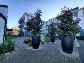 "Photo 6: 415 14968 101A Avenue in Surrey: Guildford Condo for sale in ""GUILDHOUSE"" (North Surrey)  : MLS®# R2530936"