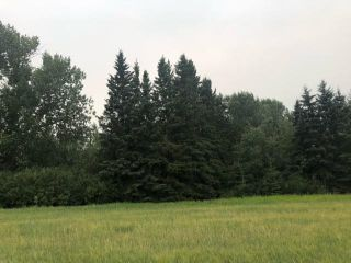 Photo 11: HWY 29 RR 175: Rural Lamont County Rural Land/Vacant Lot for sale : MLS®# E4260440
