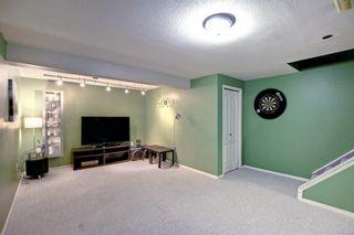 Photo 24: 8 Taradale Close NE in Calgary: Taradale Detached for sale : MLS®# A1148577