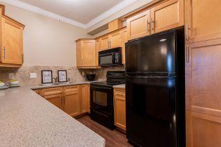 Photo 3: 103 8631 108 Street in Edmonton: Zone 15 Condo for sale : MLS®# E4252853