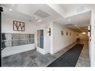 Photo 2: 403 22335 MCINTOSH AVENUE in Maple Ridge: West Central Condo for sale : MLS®# R2583216