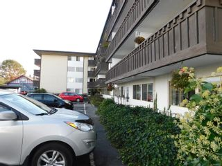 Photo 21: 216 964 Heywood Ave in : Vi Fairfield West Condo for sale (Victoria)  : MLS®# 856887