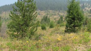 Photo 5: 80 Acres Creighton Valley Road, in Lumby: Vacant Land for sale : MLS®# 10239894