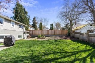 Photo 29: 3588 Savannah Ave in : SE Quadra House for sale (Saanich East)  : MLS®# 872628