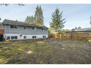 Photo 37: 12088 216 Street in Maple Ridge: West Central House for sale : MLS®# R2562227