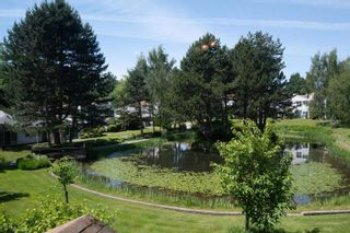 """Photo 13: 141 12233 92 Avenue in Surrey: Queen Mary Park Surrey Townhouse for sale in """"ORCHARD LAKE"""" : MLS®# R2594301"""
