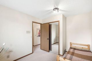 Photo 25: 31 EDGEWOOD Place NW in Calgary: Edgemont Detached for sale : MLS®# C4305127