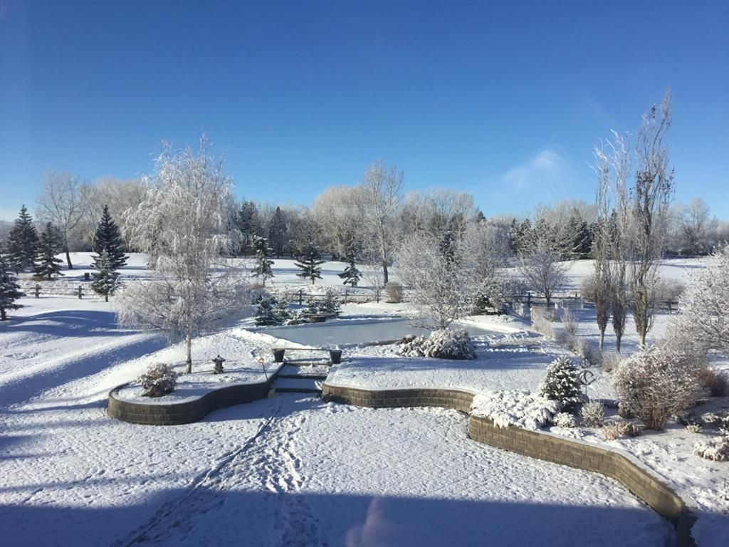Photo 42: Photos: 15 Lynx Meadows Drive NW: Calgary Detached for sale : MLS®# A1139904