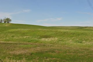 Photo 6: Range Road 16.4: Rural Starland County Land for sale : MLS®# A1049456