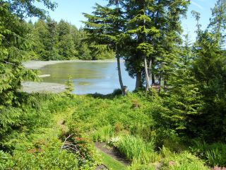 Photo 21: 1230 Pacific Rim Hwy in TOFINO: PA Tofino House for sale (Port Alberni)  : MLS®# 837426