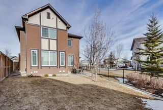 Photo 47: 7 PANATELLA View NW in Calgary: Panorama Hills Detached for sale : MLS®# A1083345