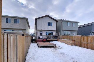 Photo 47: 134 Auburn Crest Way SE in Calgary: Auburn Bay Detached for sale : MLS®# A1061710
