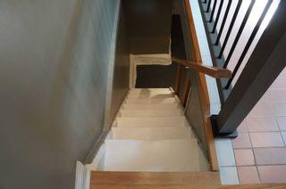 Photo 9: 232 Ontario Street in Toronto: Moss Park House (Bungalow) for lease (Toronto C08)  : MLS®# C5368644