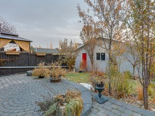 Photo 42: 183 ELGIN Way SE in Calgary: McKenzie Towne Detached for sale : MLS®# A1046358