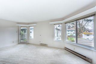 Photo 19: 306 1149 Rockland Ave in : Vi Downtown Condo for sale (Victoria)  : MLS®# 867486
