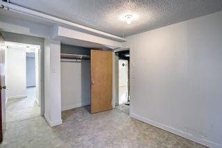 Photo 21: 10061 94 Street NW in Edmonton: Zone 13 House for sale : MLS®# E4266327