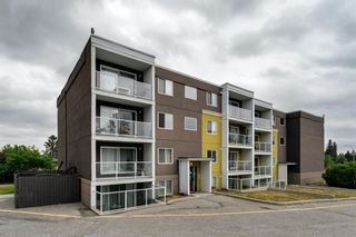 Main Photo: 201 4455D Greenview Drive NE in Calgary: Greenview Apartment for sale : MLS®# A1128161