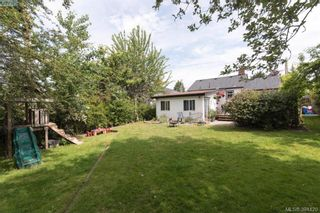 Photo 16: 319 Walter Ave in VICTORIA: SW Gorge House for sale (Saanich West)  : MLS®# 790759