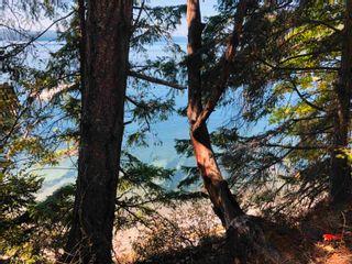 Photo 5: 487 LETOUR Road: Mayne Island Land for sale (Islands-Van. & Gulf)  : MLS®# R2614225