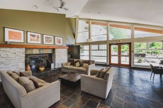 """Photo 15: 302 400 KLAHANIE Drive in Port Moody: Port Moody Centre Condo for sale in """"TIDES"""" : MLS®# R2170542"""