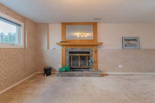 Photo 33:  in Edmonton: Zone 16 House for sale : MLS®# E4263667