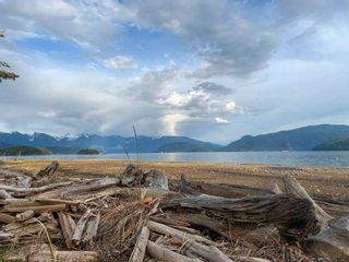"""Photo 7: 1308 BURNS Road in Gibsons: Gibsons & Area House for sale in """"Hopkins Landing"""" (Sunshine Coast)  : MLS®# R2583692"""