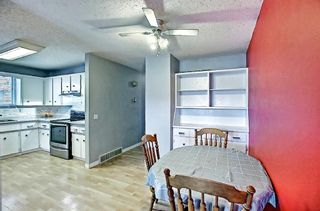 Photo 15: 1137 Berkley Drive NW in Calgary: Beddington Heights Semi Detached for sale : MLS®# A1136717