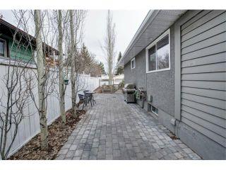 Photo 18: Home For Sale Acadia Calgary