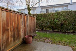 Photo 16: 32 3111 BECKMAN Place in Richmond: West Cambie Townhouse for sale : MLS®# R2235417