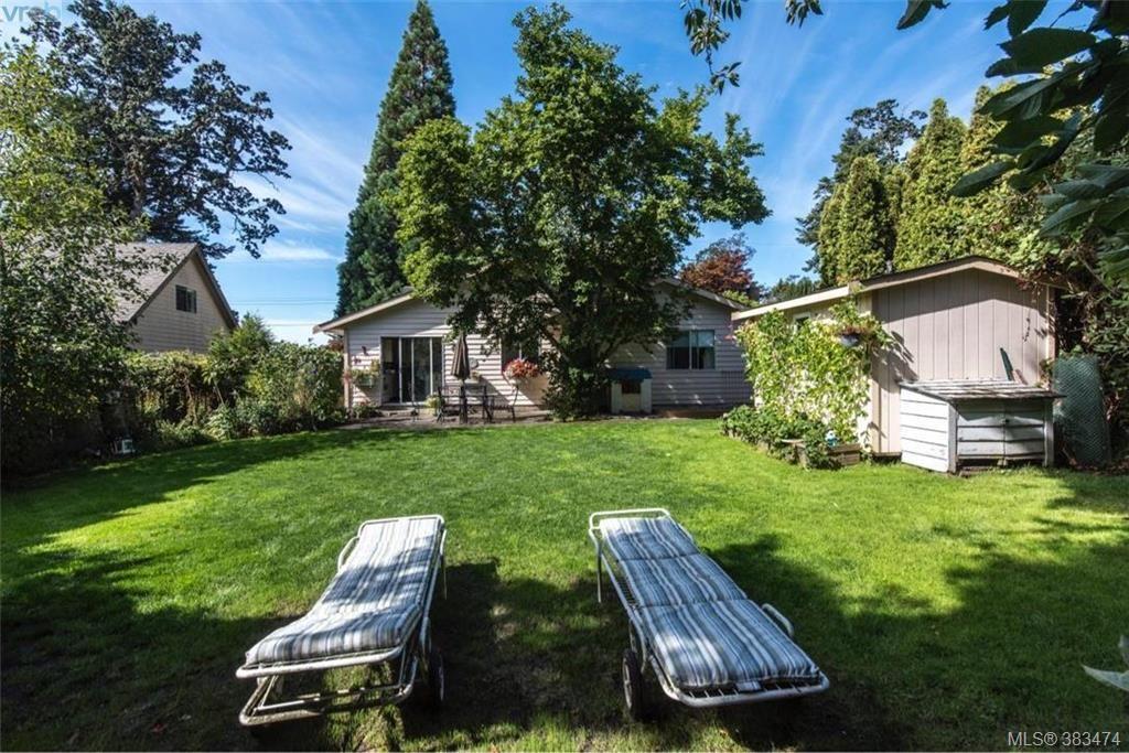 Main Photo: 4019 Malton Ave in VICTORIA: SE Mt Doug House for sale (Saanich East)  : MLS®# 770733
