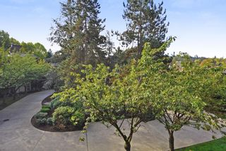 """Photo 14: 311 9847 MANCHESTER Drive in Burnaby: Cariboo Condo for sale in """"Barclay Woods"""" (Burnaby North)  : MLS®# R2317069"""