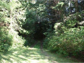 Photo 10: 1747 HANBURY Road: Roberts Creek House for sale (Sunshine Coast)  : MLS®# V903372