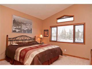 Photo 15: 109 DOUGLASVIEW Rise SE in Calgary: Douglasdale Estates House for sale : MLS®# C4040431