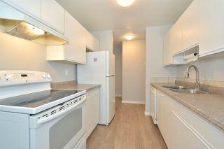 Photo 12: 203 10504 77 Avenue in Edmonton: Zone 15 Condo for sale : MLS®# E4229459