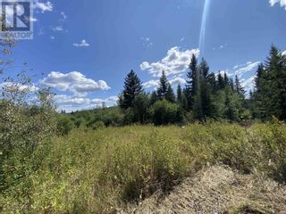 Photo 9: DL2350 TIMOTHY LAKE ROAD in Lac La Hache: Vacant Land for sale : MLS®# R2610977