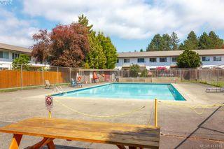 Photo 19: 330 W Burnside Rd in VICTORIA: SW Tillicum Condo for sale (Saanich West)  : MLS®# 822178