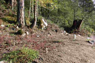 "Photo 8: LOT D 5680 CARMEL Place in Sechelt: Sechelt District Land for sale in ""TUWANEK"" (Sunshine Coast)  : MLS®# R2524461"