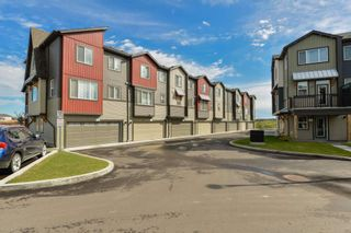 Photo 45: 136 16903 68 Street NW in Edmonton: Zone 28 Townhouse for sale : MLS®# E4249686